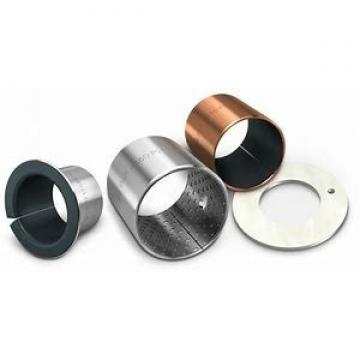 AST SIJK30C plain bearings