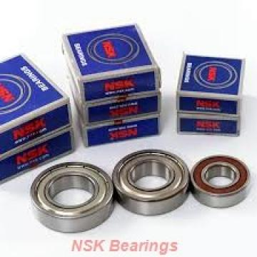 NSK 6204du  Self Aligning Ball Bearings