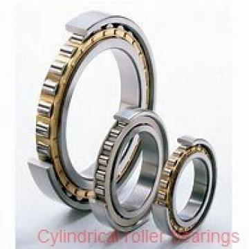 AST NJ316 EM cylindrical roller bearings