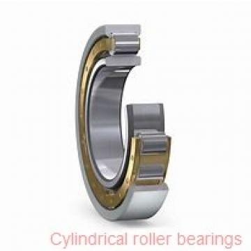 Toyana NJ29/710 cylindrical roller bearings